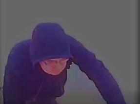 Howell Police Seek Porch Package Thief