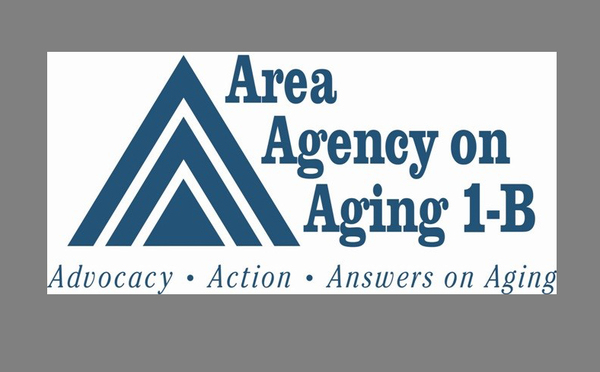 Area Agency On Aging Seeks Approval Of 2019 Implementation Plan