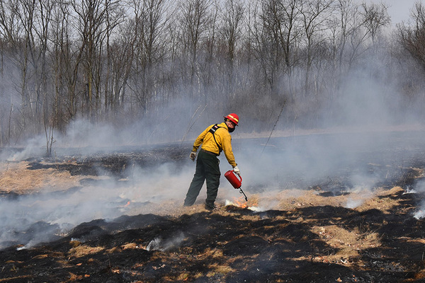 Prescribed Burns Taking Place At Area Metroparks This Spring