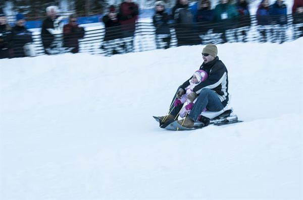 Cardboard Sled Races And More Coming To Kensington