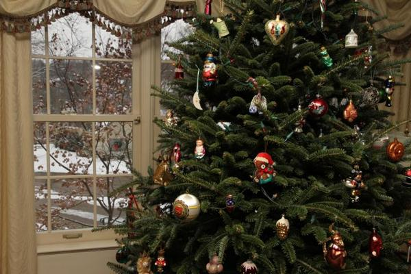 WHMI 93.5 Local News : Used Holiday Trees In Brighton To