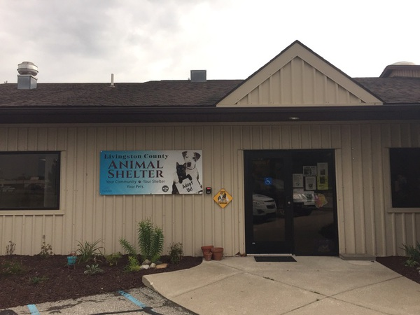 "Livingston County Animal Shelter To Hold ""Empty The Shelter"" Event Saturday"